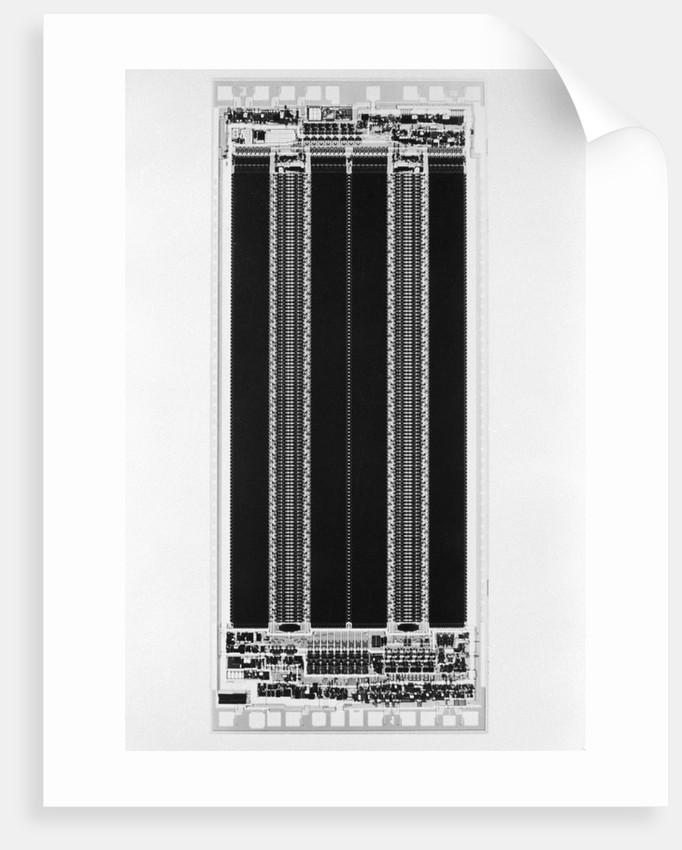 Computer Chip by Corbis