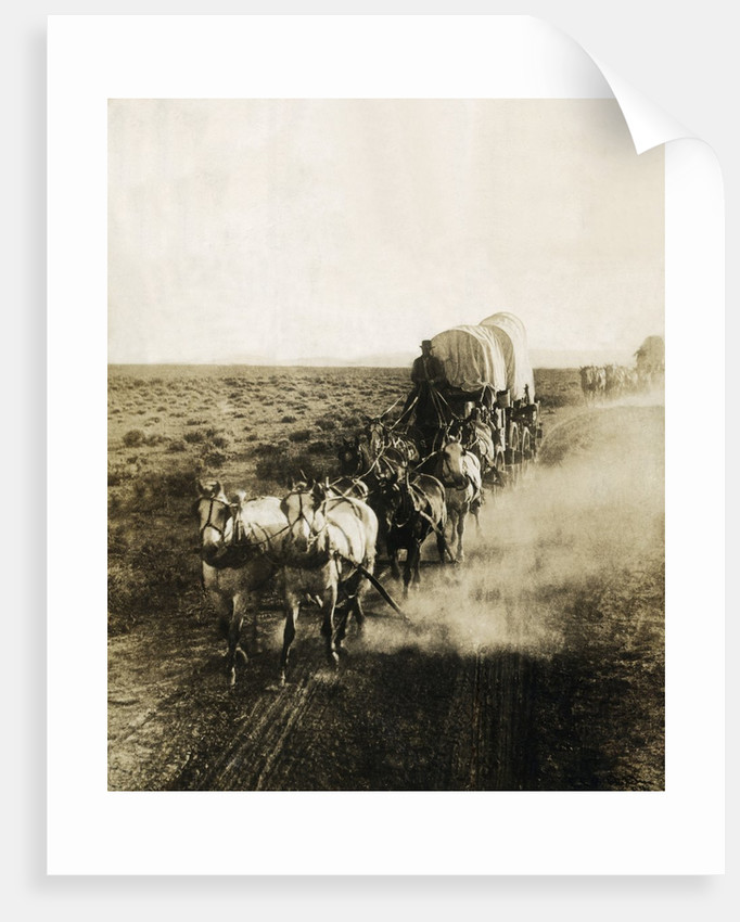 Covered Wagons on the Plains Going West by Corbis