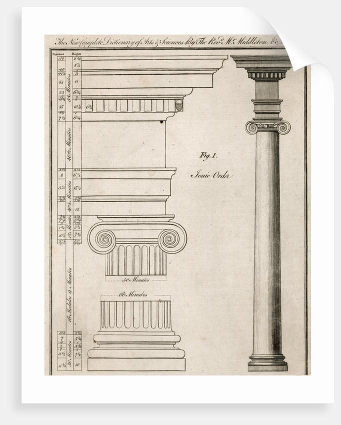 Illustration of Ionic Order of Columns