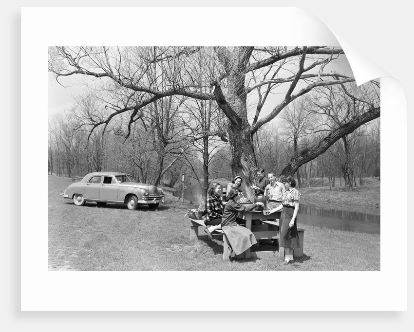 Family Having a Picnic by Corbis