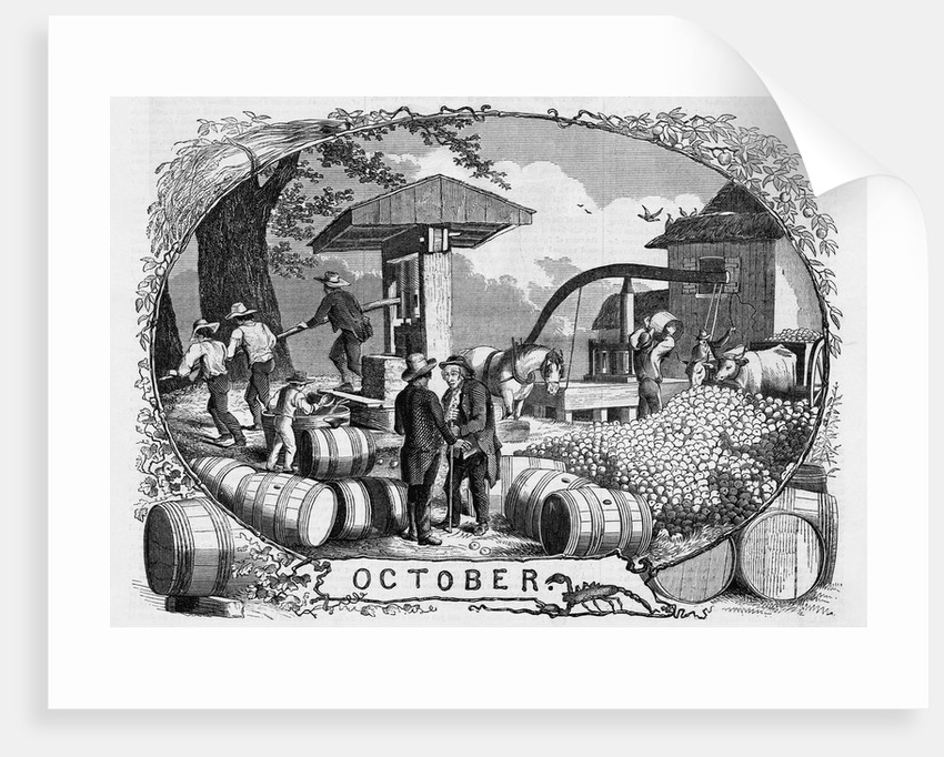 Allegory for October by Corbis