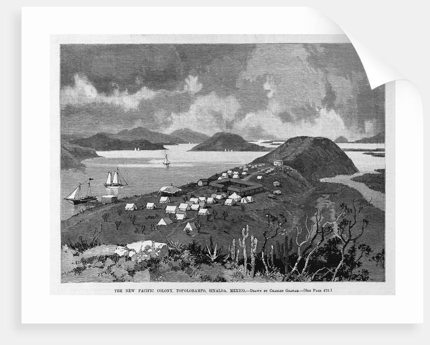 The New Pacific Colony, Topolobampo, Sinaloa, Mexico by Charles Graham