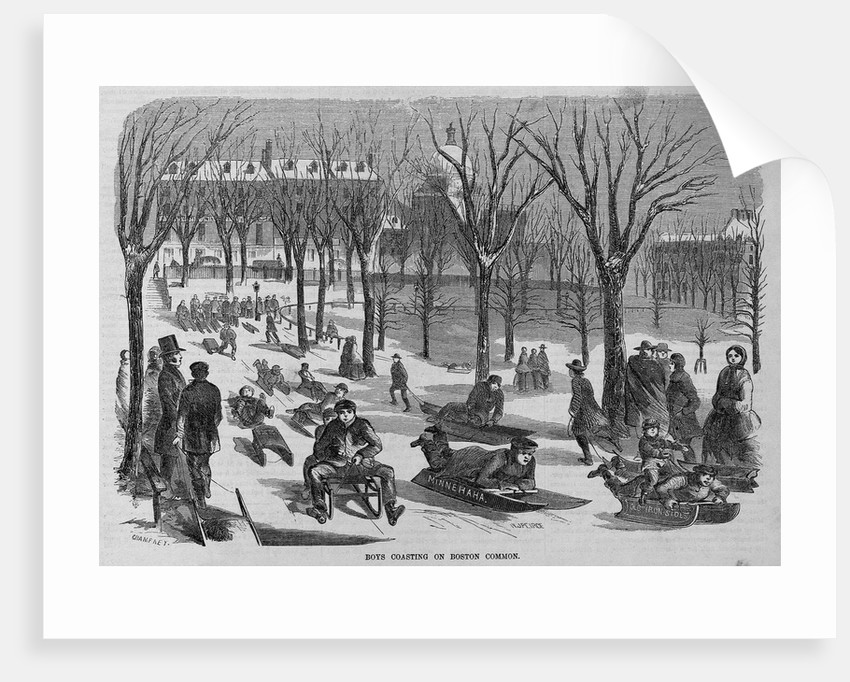 Boys Coasting on Boston Common Illustration by Corbis