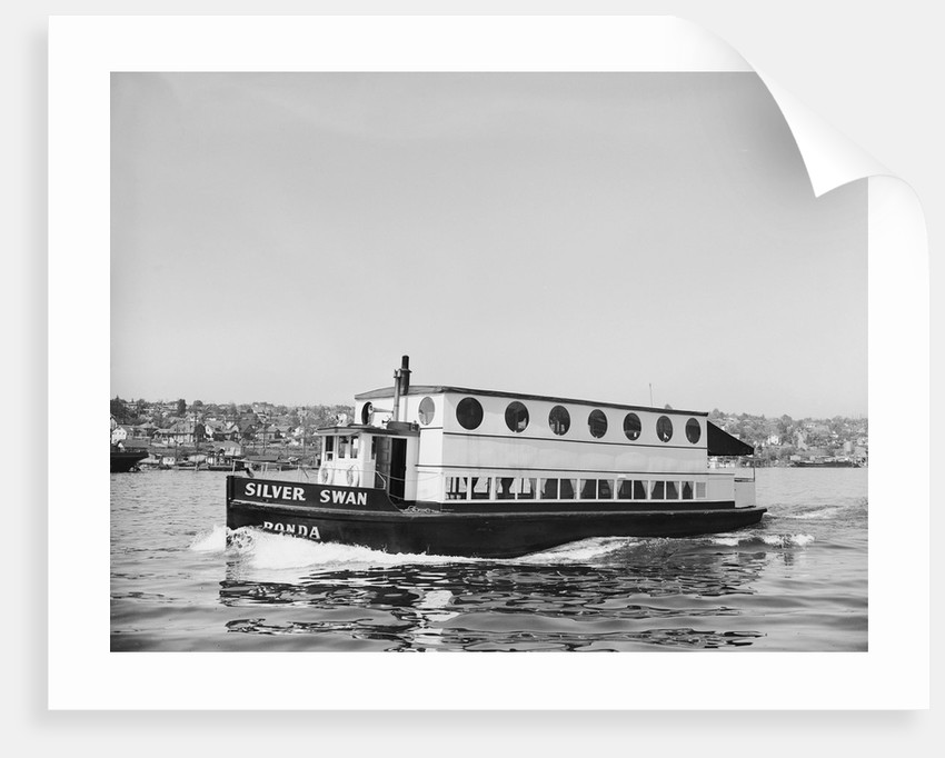 The Silver Swan on Lake Union by Corbis
