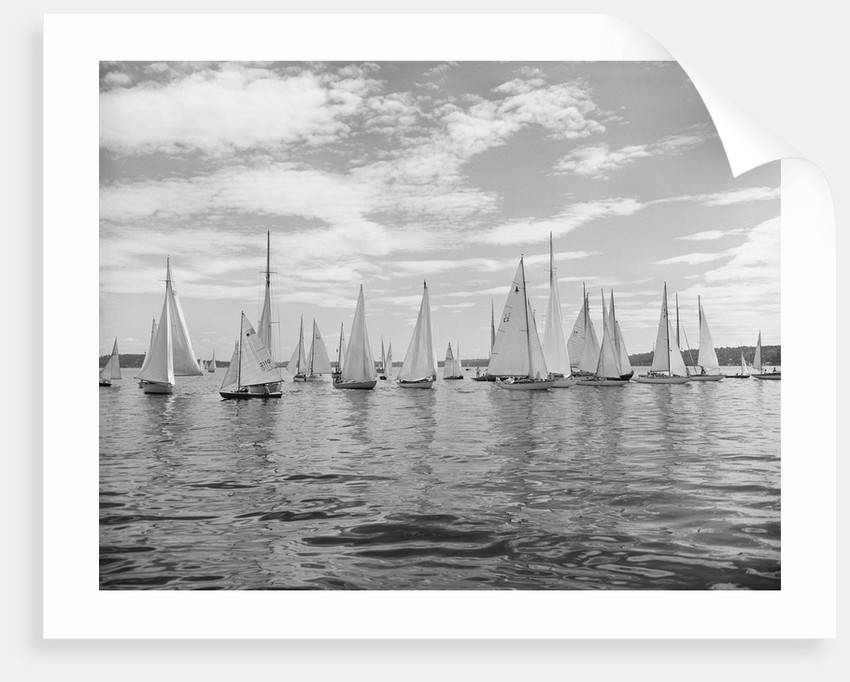 Boats Lined Up for a Race on Lake Washington by Corbis