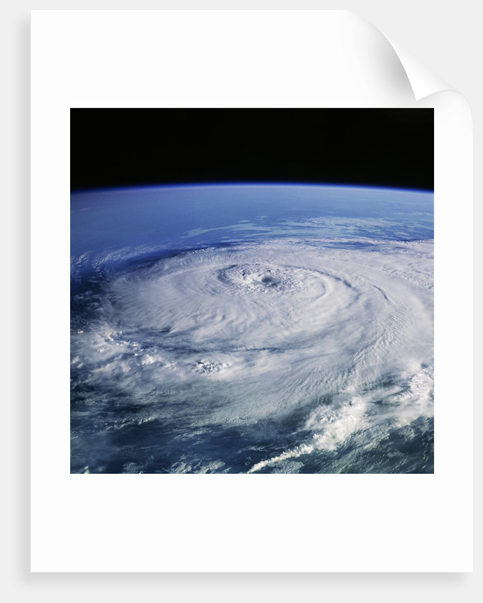 Hurricane Elena from Space Shuttle Discovery by Corbis