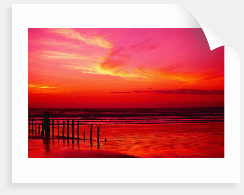 Surf Rolling onto Beach at Sunset by Corbis