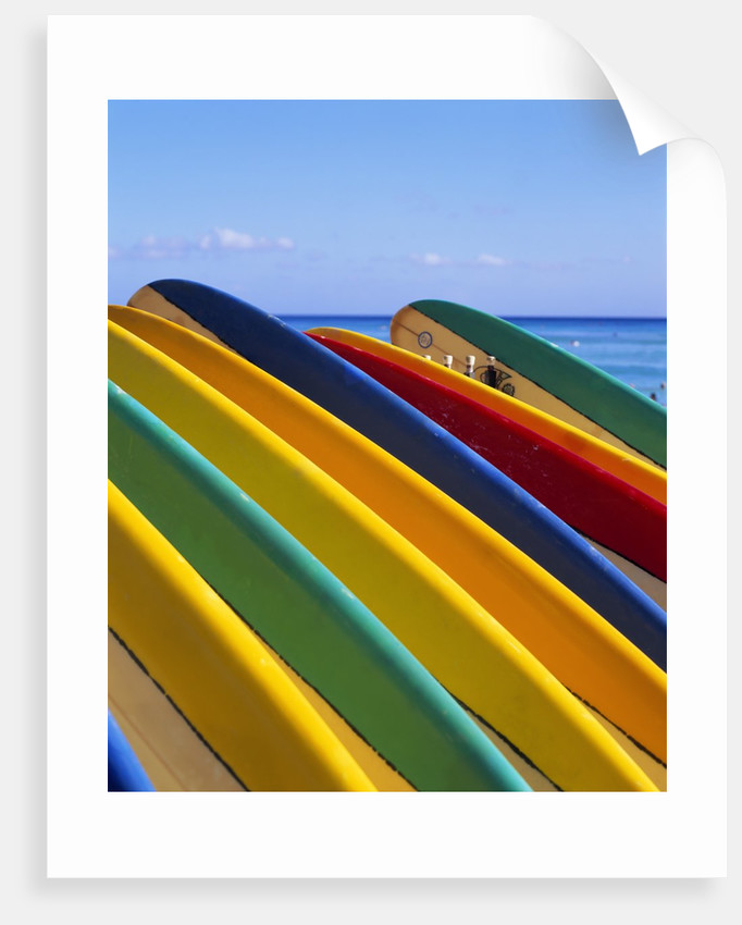 Row of Surfboards at Beach by Corbis
