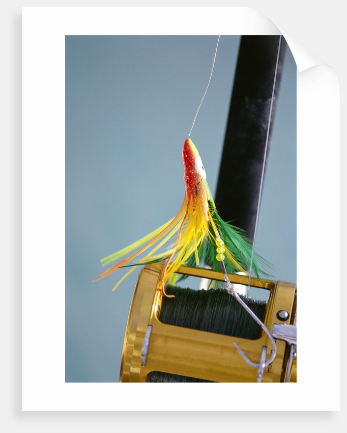 Fishing Hook and Line by Corbis