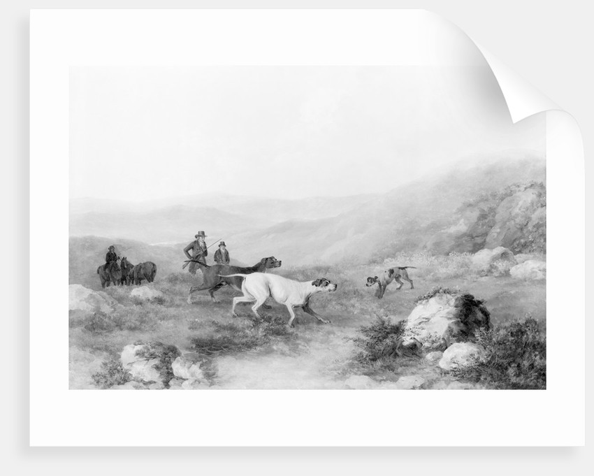 Colonel Thornton Hunting with His Dogs by Corbis