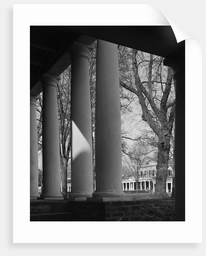 Colonnade on the Grounds of Academical Village at the University of Virginia by Corbis