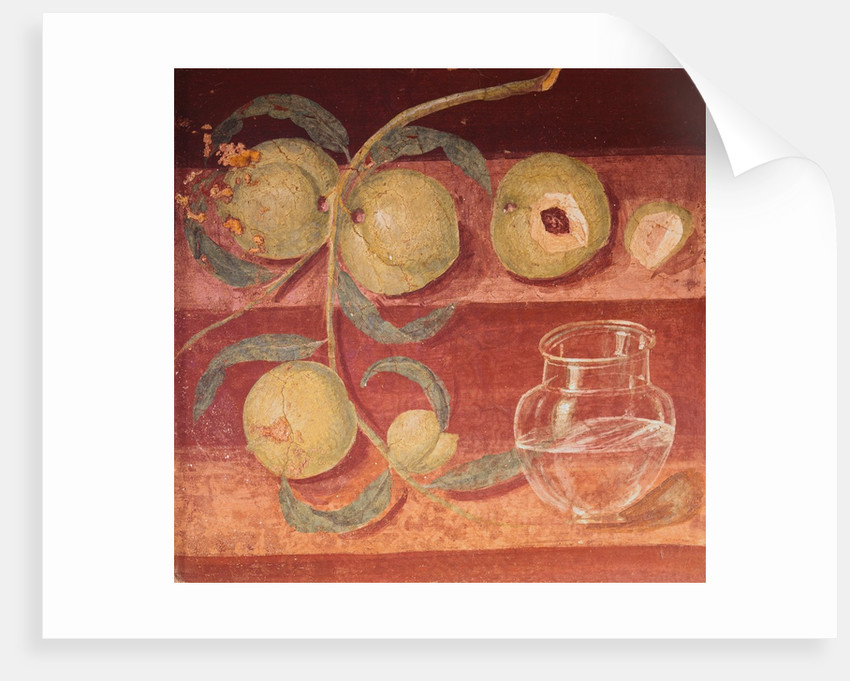 Fresco of Water Pot and Fruit in Pompeii Kitchen by Corbis