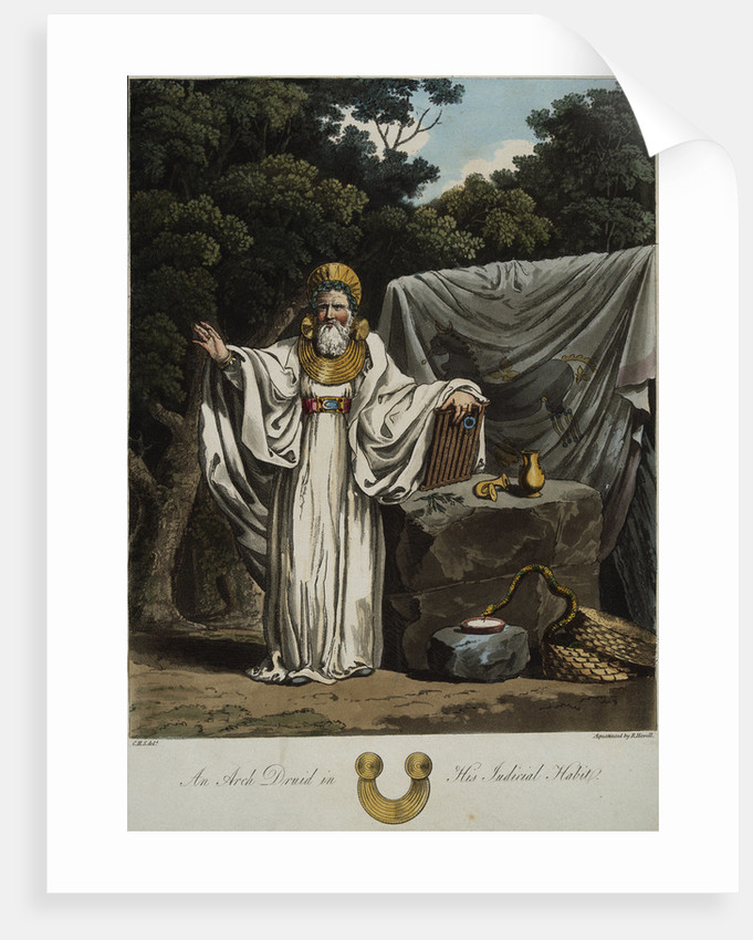 An Arch Druid In His Judicial Habit Posters Prints By Robert Havell