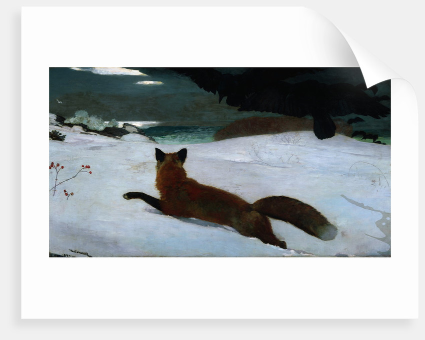 The Fox Hunt by Winslow Homer