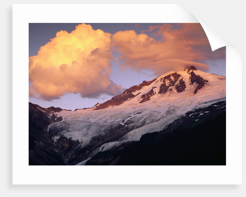 Coleman Glacier and Mount Baker by Corbis