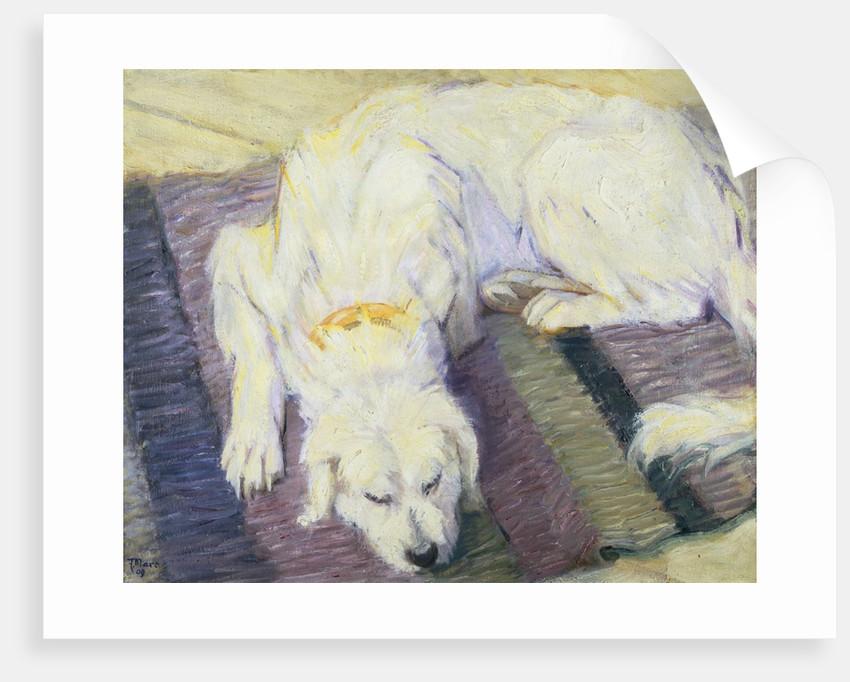 Dog Lying Down (Dog Portrait) by Franz Marc