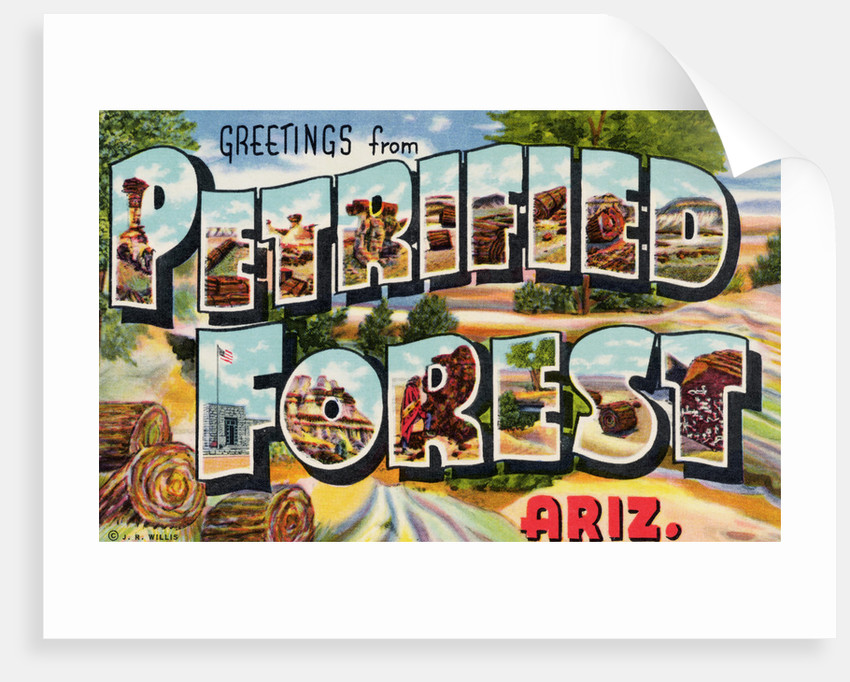 Greetings from Petrified Forest, Arizona Postcard by Corbis