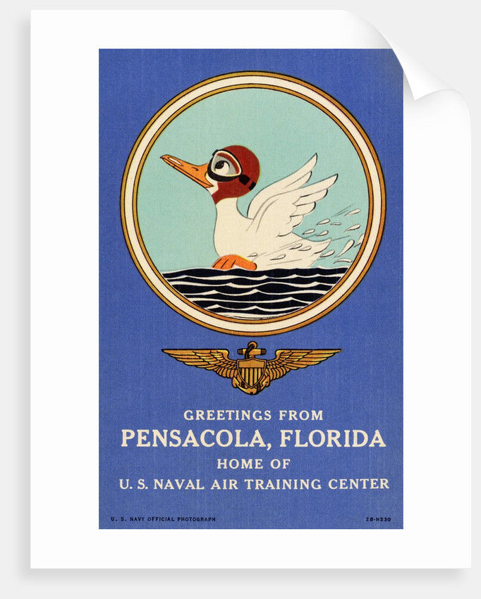 Greeting Card from Pensacola, Florida by Corbis