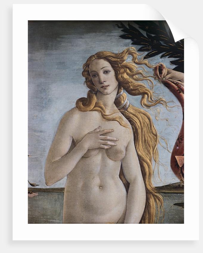 Detail of Birth of Venus by Sandro Botticelli