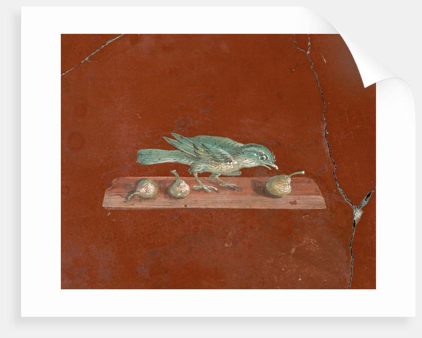 Detail of Roman Fresco Series at Oplonti Villa by Corbis