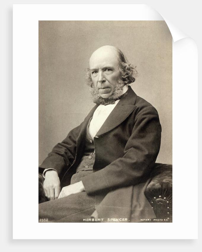 Philosopher Herbert Spencer by Corbis