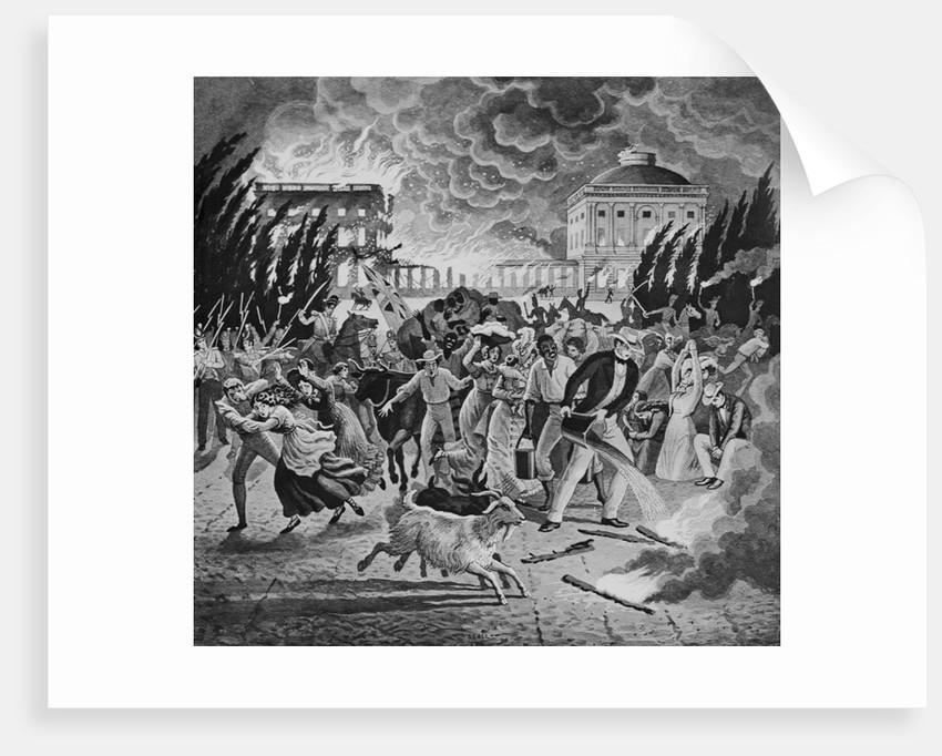 British Burning the White House by Corbis