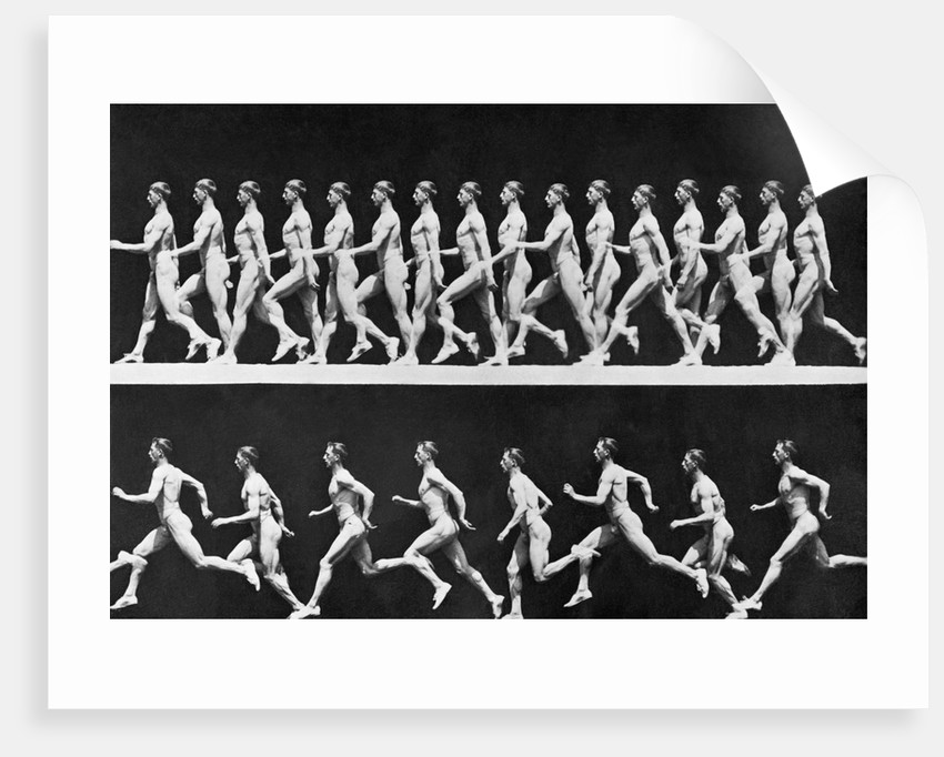 Sequential Frames of Nude Man Walking and Running posters & prints ...