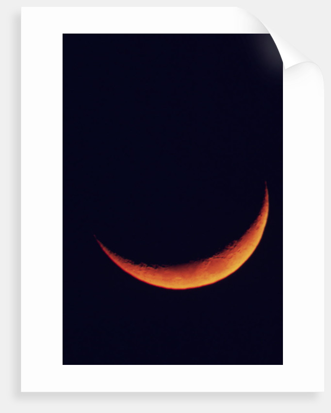 Crescent Moon Setting by Corbis