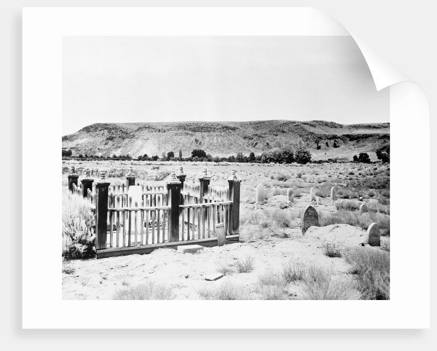Cemetery at National Park by Corbis