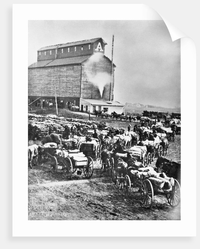 Farmers at Steam Operated Grain Elevator by Corbis