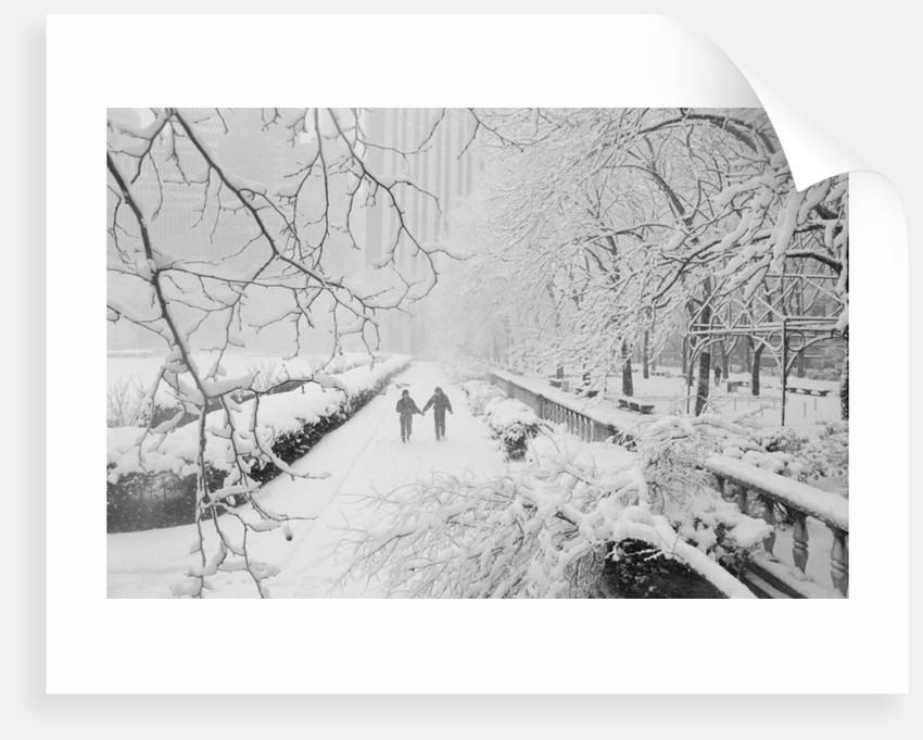 Couple Walking Through Park in Snow by Corbis