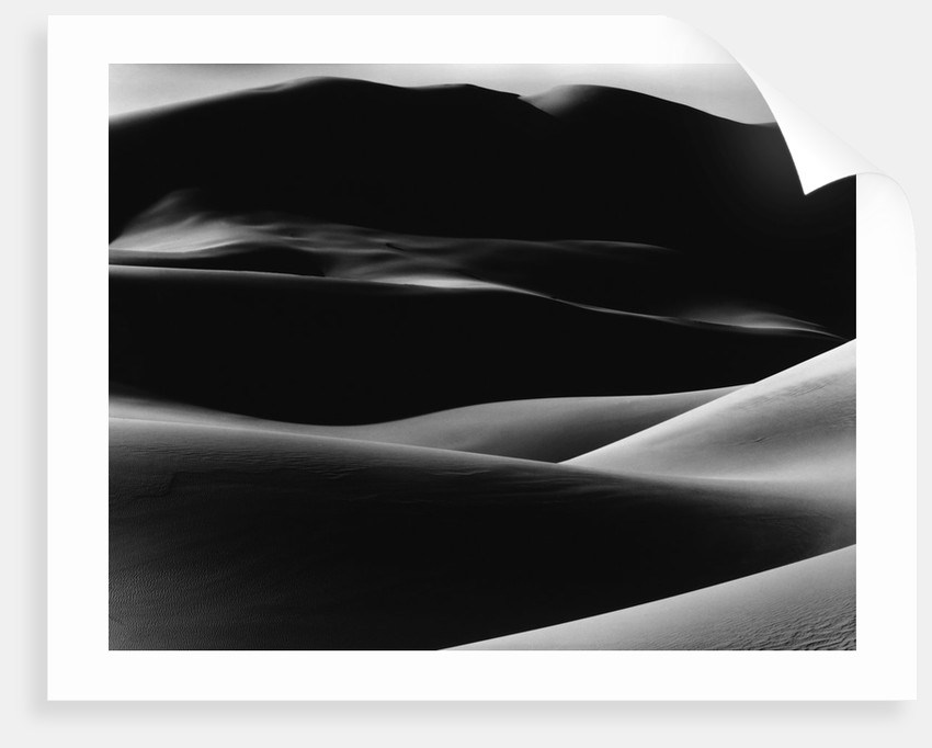 Dunes by Corbis