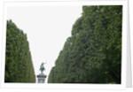 Equestrian statue between trees, Paris, France by Corbis
