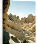 Stones, Joshua Tree National Park in southern california by Corbis
