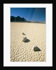 Dried clay, Death Valley, Nevada, USA by Corbis