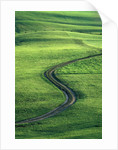 Country lane winding through meadow in the Allgaeu Alps by Corbis