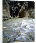 The Narrows, Zion National Park, Utah, USA by Corbis
