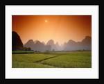 Rice fields an chalk mountains at twilight, Yangshou, Guangxi Province, China by Corbis