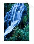 Vidae Falls waterfall in Crater Lake National Park, Oregon, USA by Corbis