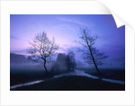 Misty river and forest at dusk, Baden-Wuerttemberg, Germany by Corbis