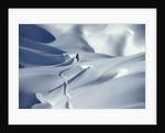 Snowboarder Riding in Powder Snow, Austria, Europe by Corbis