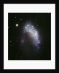 Galaxy NGC 1427A Plunges Toward the Fornax Galaxy Cluster by Corbis