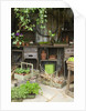 Potting Shed in Garden at Hampton Court Flower Show by Corbis