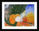 Sea Temperature and Hurricane Rita by Corbis