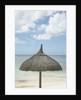 View of a tropical umbrella on a beach by Corbis