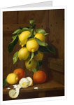 A Still Life of Lemons and Oranges by Antonio Mensaque