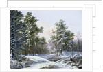 A Fine Winter's Day by Pieter Gerardus van Os