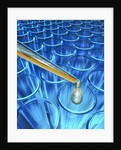Pipette Dripping Liquid into Test Tubes by Corbis