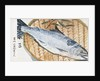 Japanese Matchbox Label with a Fish by Corbis
