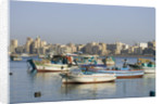Fishing Boats in Alexandria Harbor by Corbis